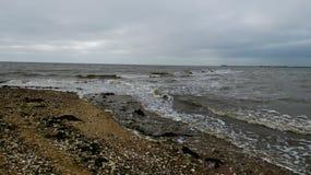 Παραλία στη δύση Mersea, Essex, Αγγλία 9 στοκ εικόνα
