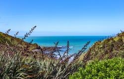 Παραλία στη Nova Zelandia NA της Νέας Ζηλανδίας - Praia στοκ εικόνα με δικαίωμα ελεύθερης χρήσης