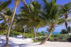 Παραλία στο Playa del Carmen, Μεξικό Στοκ φωτογραφία με δικαίωμα ελεύθερης χρήσης