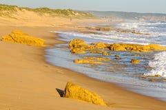 Παραλία του ST Andrews - σίκαλη στοκ φωτογραφία με δικαίωμα ελεύθερης χρήσης