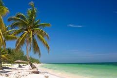 παραλία τροπική Στοκ Φωτογραφίες
