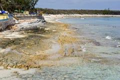 παραλία των Μπαχαμών Στοκ εικόνες με δικαίωμα ελεύθερης χρήσης