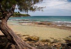 παραλία Χαβάη kauai τροπικό Στοκ εικόνες με δικαίωμα ελεύθερης χρήσης