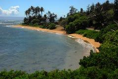 παραλία Χαβάη molokai murphys Στοκ Φωτογραφία