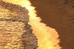 παραλία χρυσή Στοκ εικόνα με δικαίωμα ελεύθερης χρήσης