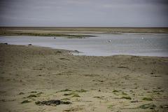 Παραλία Beaumaris Anglesey, βόρεια Ουαλία, UK Λακκούβες του νερού κατά τη διάρκεια της χαμηλής παλίρροιας Στοκ Φωτογραφίες