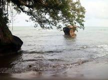 Παραλία Bolong Karang Στοκ Φωτογραφία