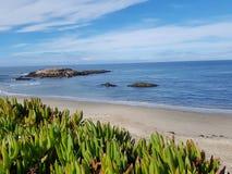 Παραλία Californien Στοκ Φωτογραφία