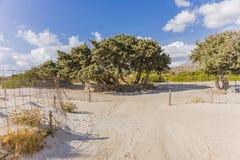 Παραλία Elafonissi Στοκ Φωτογραφία
