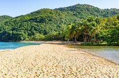 Παραλία Grande Anse, Deschaies, Γουαδελούπη, καραϊβική Στοκ Εικόνες