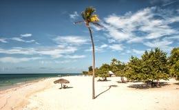 Παραλία Guardalavaca, HolguÃn, Κούβα στοκ εικόνες