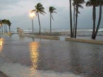 Παραλία Hollywood που πλημμυρίζουν Στοκ φωτογραφία με δικαίωμα ελεύθερης χρήσης