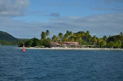 Παραλία Karibik Fealing λεσχών παραλιών της Μαρτινίκα στοκ φωτογραφίες με δικαίωμα ελεύθερης χρήσης