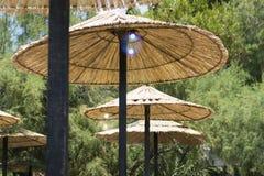 παραλία parasols στοκ φωτογραφίες με δικαίωμα ελεύθερης χρήσης