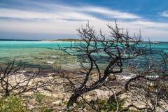 Παραλία Piantarella κοντά σε Bonifacio, Corse, Γαλλία Στοκ φωτογραφία με δικαίωμα ελεύθερης χρήσης