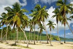 Παραλία Rincon Playa στη Δομινικανή Δημοκρατία Στοκ Φωτογραφίες