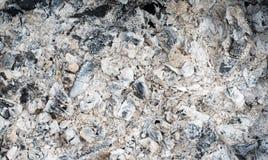 Παραμένει ξύλινοι άνθρακας και τέφρες μετά από την καύση Στοκ Φωτογραφίες