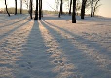παραμονή αυγής Χριστουγέ& Στοκ φωτογραφία με δικαίωμα ελεύθερης χρήσης