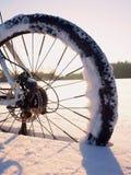 Παραμονή ποδηλάτων βουνών στο χιόνι σκονών Νιφάδες χιονιού που λειώνουν στο σκοτάδι από το οδικό ελαστικό αυτοκινήτου Στοκ Εικόνες