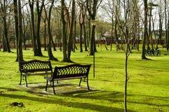 Πολυθρόνα στον κήπο Στοκ εικόνα με δικαίωμα ελεύθερης χρήσης