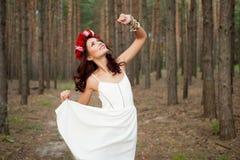 Παραμύθι στο δάσος Στοκ φωτογραφία με δικαίωμα ελεύθερης χρήσης