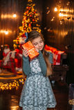 Παραμύθι Χριστουγέννων Στοκ φωτογραφίες με δικαίωμα ελεύθερης χρήσης