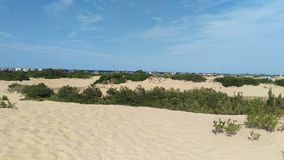 Παρασύρουσες άμμοι Στοκ Εικόνες