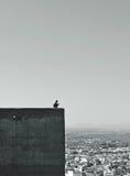 Παρατήρηση της Γρανάδας Στοκ Φωτογραφία