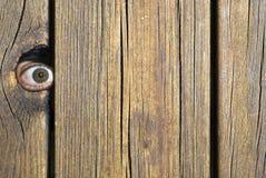 παρατηρητής Στοκ εικόνα με δικαίωμα ελεύθερης χρήσης