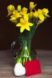 Παραχωρήσώντας κρίνος daffodil σε ένα βάζο γυαλιού Στοκ φωτογραφία με δικαίωμα ελεύθερης χρήσης