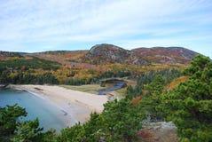 Παραλία άμμου και κυψέλη μελισσών Στοκ Φωτογραφίες