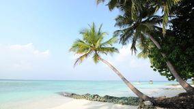 Παραλία άμμου και ωκεάνιο κύμα παραλιών waveSand ωκεάνιου και, Μαλδίβες απόθεμα βίντεο