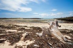 Παραλία άμμου παραδείσου στη Μαδαγασκάρη, Antsiranana, Diego Suarez Στοκ Φωτογραφία