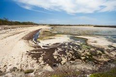 Παραλία άμμου παραδείσου στη Μαδαγασκάρη, Antsiranana, Diego Suarez Στοκ Φωτογραφίες