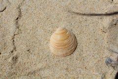 Παραλία άμμου Στοκ φωτογραφία με δικαίωμα ελεύθερης χρήσης
