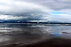 Παραλία ίντσας, ιρλανδική αγελάδα κομητειών, Ιρλανδία στοκ εικόνες