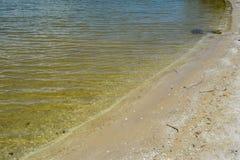 Παραλία ακρωτηρίου Κανάβεραλ Στοκ Εικόνες