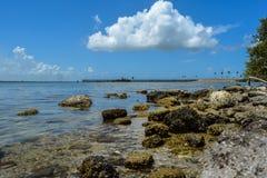 Παραλία ακρωτηρίου Κανάβεραλ Στοκ φωτογραφία με δικαίωμα ελεύθερης χρήσης