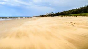 παραλία ανεμοδαρμένη Στοκ φωτογραφίες με δικαίωμα ελεύθερης χρήσης