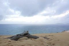 Παραλία Αυστραλία 2 ουράνιων τόξων Στοκ εικόνα με δικαίωμα ελεύθερης χρήσης