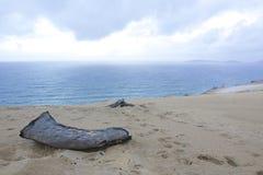Παραλία Αυστραλία ουράνιων τόξων Στοκ Φωτογραφία
