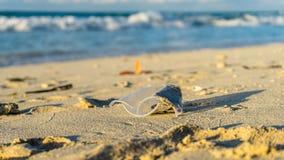 παραλία βρώμικη Στοκ φωτογραφίες με δικαίωμα ελεύθερης χρήσης