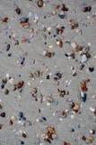 Παραλία θάλασσας άμμου της Shell Στοκ Φωτογραφία