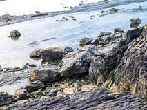Παραλία Ιρλανδία στοκ εικόνες