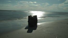 Παραλία και ωκεανός Στοκ Εικόνα