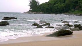Παραλία κατά τη διάρκεια του τυφώνα ανέμων κυκλώνων άσχημου καιρού κίνηση αργή απόθεμα βίντεο