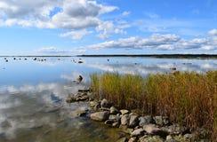 Παραλία καλοκαιριού σε Kuressaare Στοκ Φωτογραφία