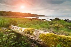 Παραλία κοντά σε Armadale Στοκ φωτογραφίες με δικαίωμα ελεύθερης χρήσης