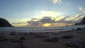 Παραλία κολοκύθας για να προσέξει την ημέρα ηλιοβασιλέματος Στοκ Εικόνες