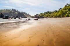 Παραλία κόλπων του Τρινιδάδ Στοκ εικόνα με δικαίωμα ελεύθερης χρήσης